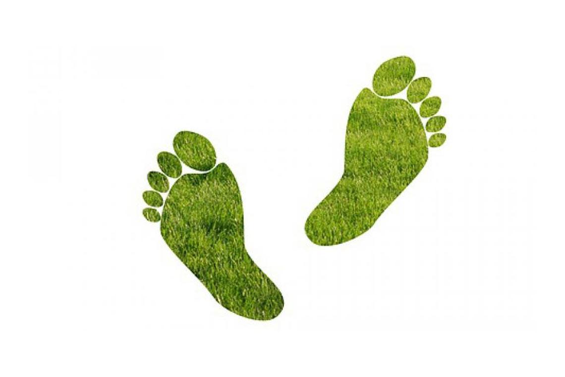 eco-footprint-ecojist-1